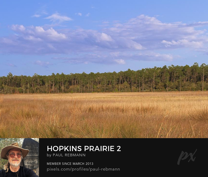 View online purchase options for Hopkins Prairie #2 by Paul Rebmann