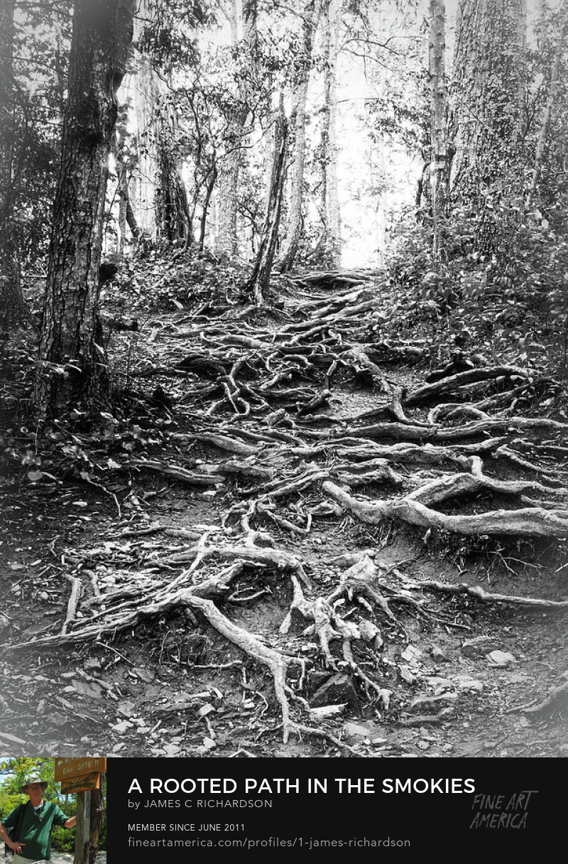 A Rooted Path in the Smokies