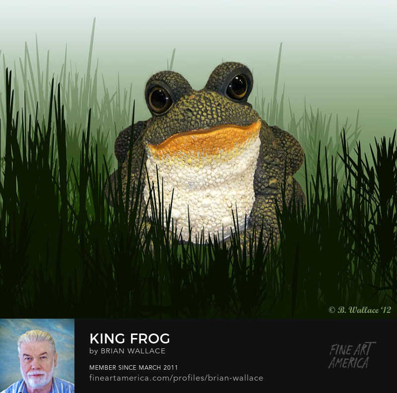 King Frog by Brian Wallace
