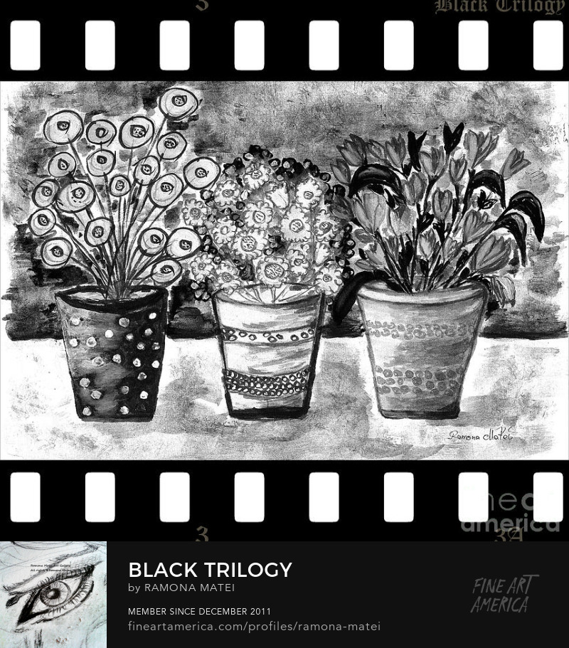 beautiful black and white trilogy happy flowers