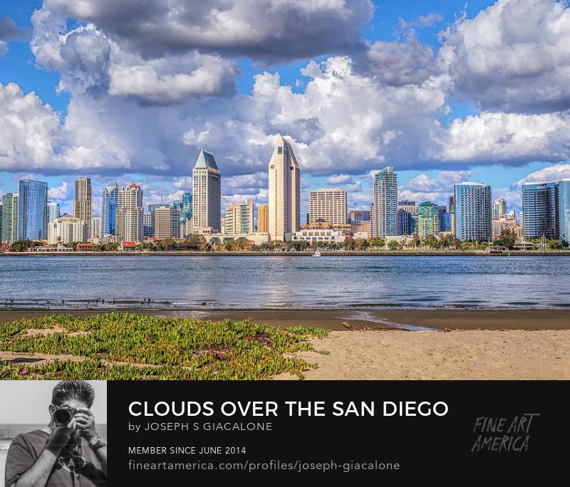 San Diego Skyline Art Online