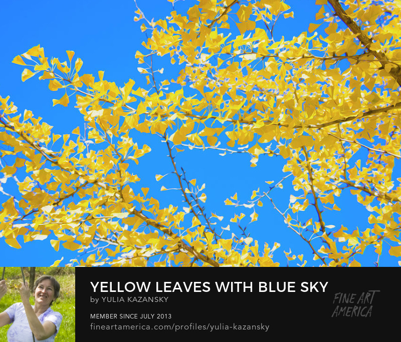 Yellow leaves with Blue sky by Yulia Kazansky