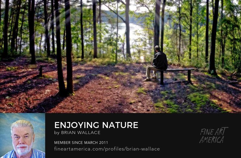 Enjoying Nature by Brian Wallace