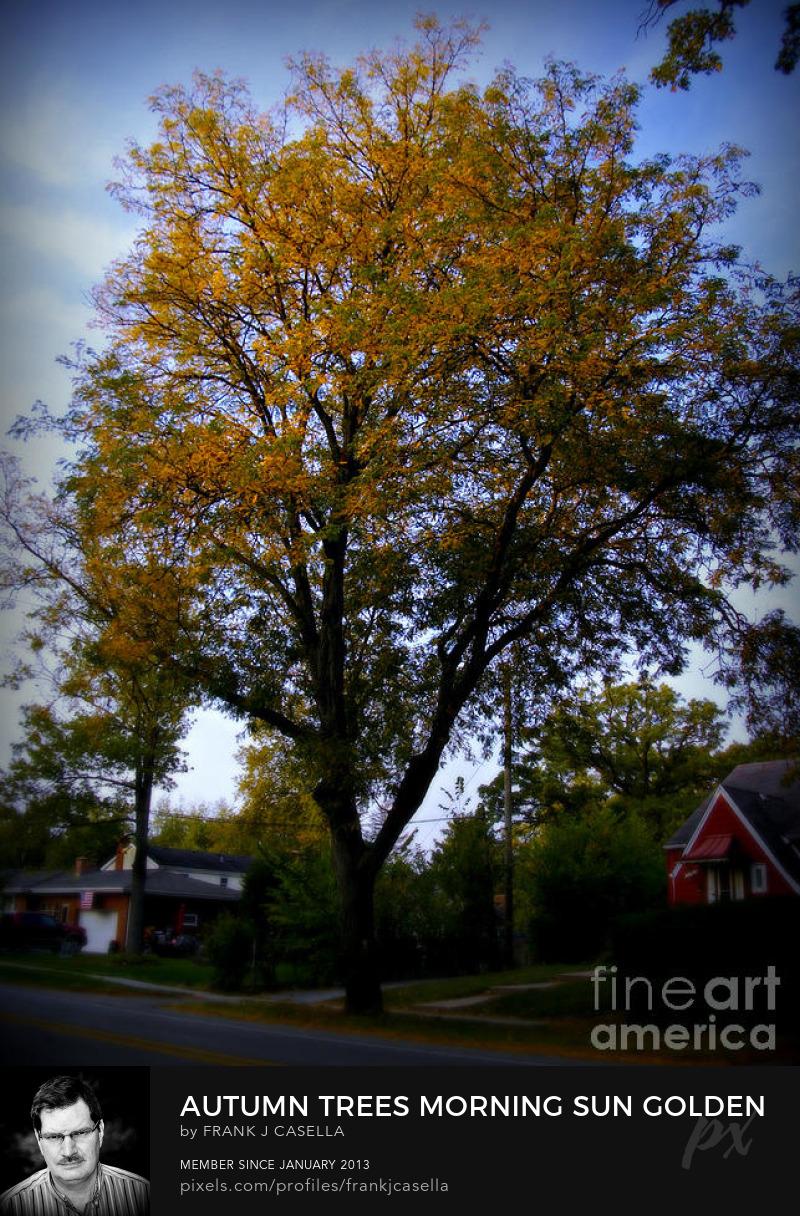 Color Landscape Art Photograph Buy Art Online