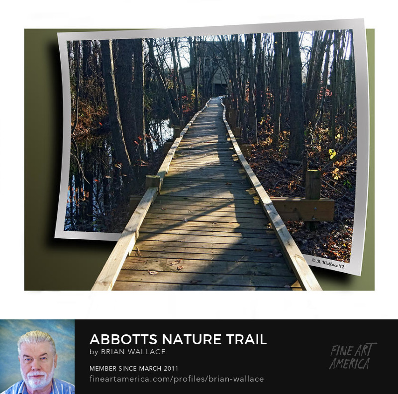 Abbotts Nature Trail by Brian Wallace
