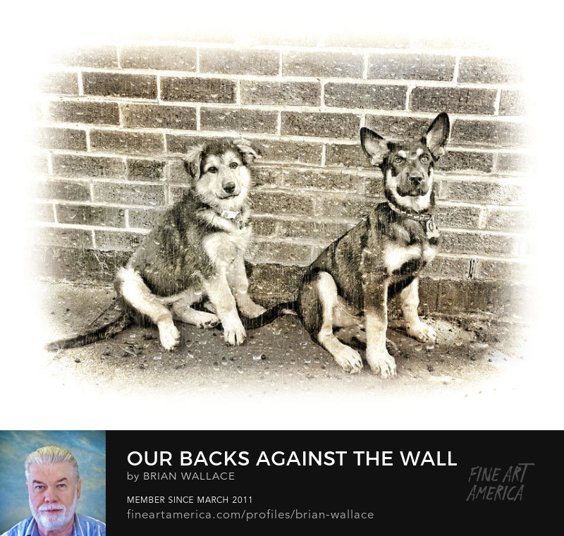 Our Backs Against The Wall by Brian Wallace