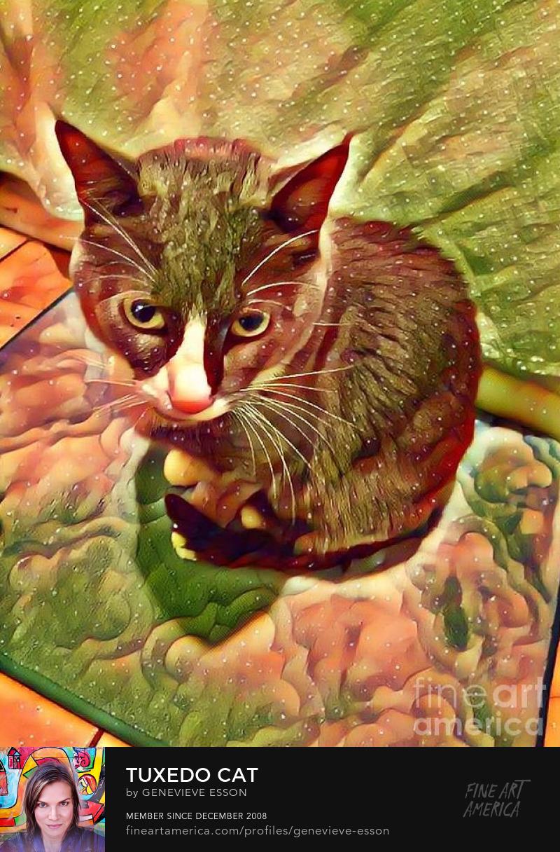 Tuxedo Cat Art Prints