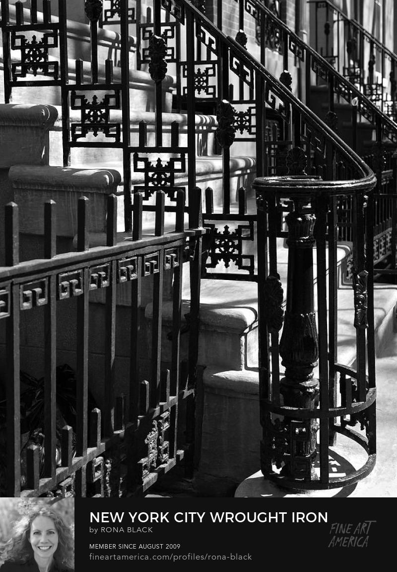 New York City Wrought Iron � Rona Black