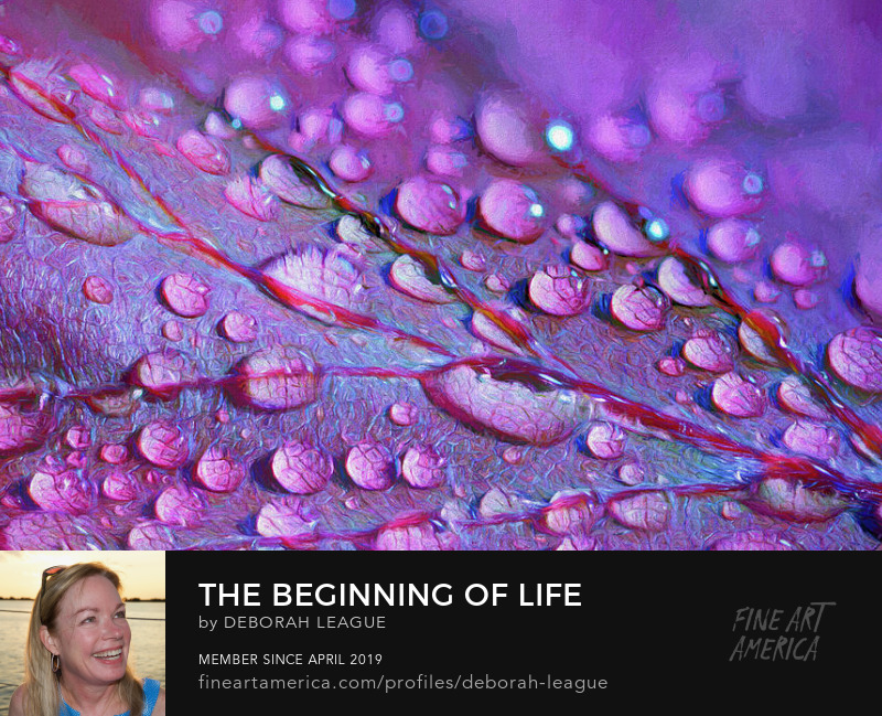Fine Digital Art The Beginning Of Life by Deborah League