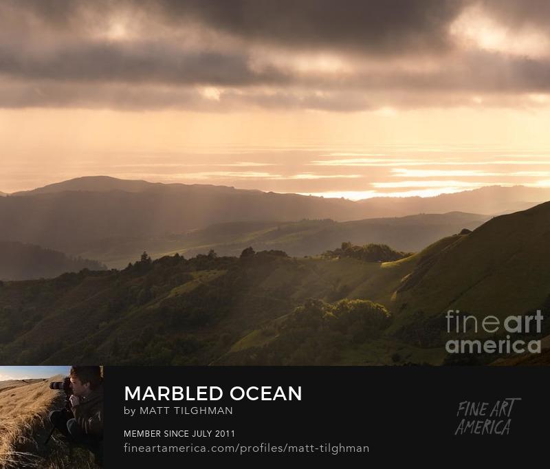 Marbled Ocean Russian Ridge Open Space Art Prints