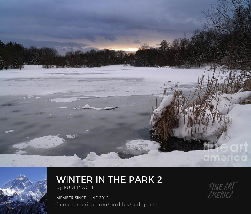 winter in the park by Rudi Prott
