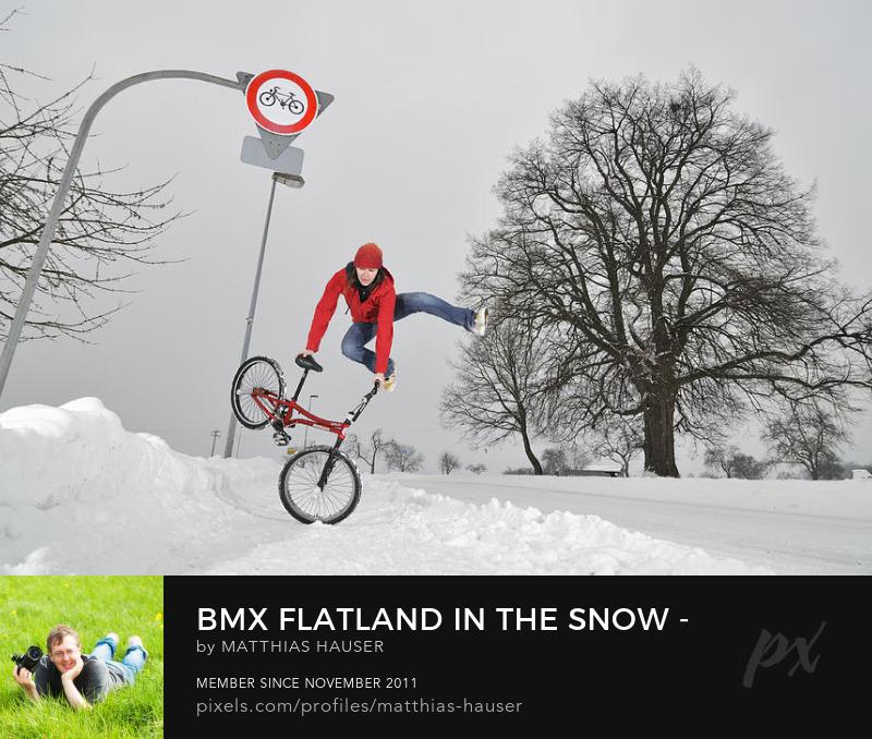 BMX Flatland Art Prints