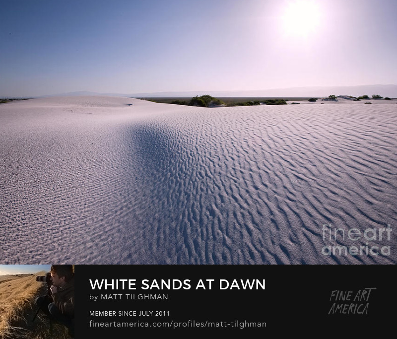 Morning at White Sands National Monument Art Prints