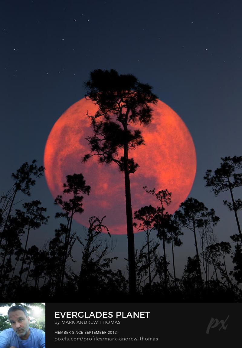 full moon Photography Prints