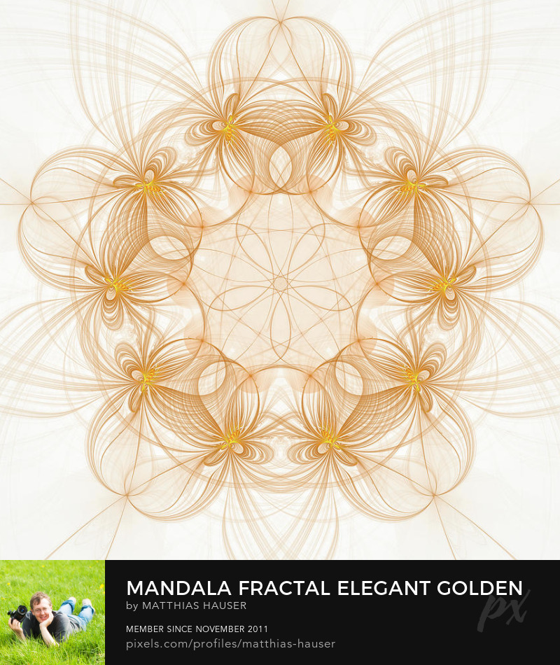 Fractal Mandala Art Gold and White by Matthias Hauser