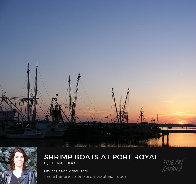 Shrimp Boats in sunset
