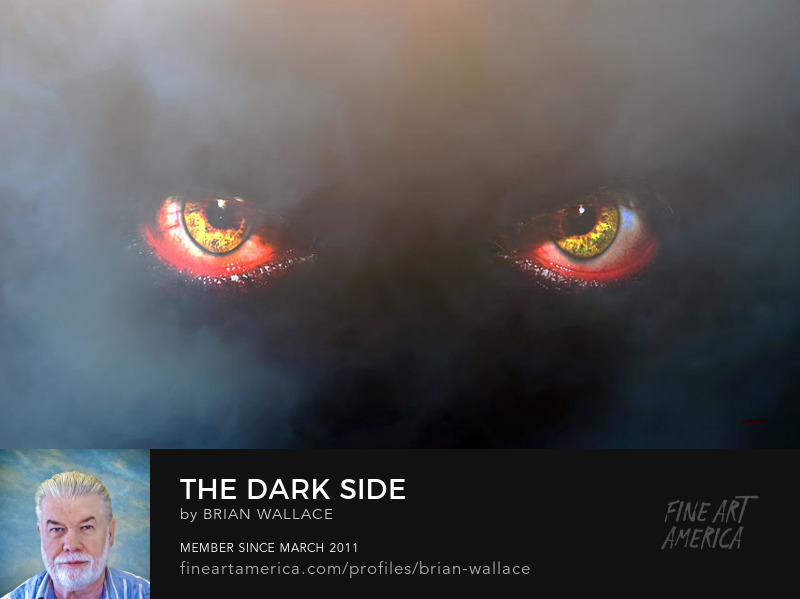 The Dark Side by Brian Wallace
