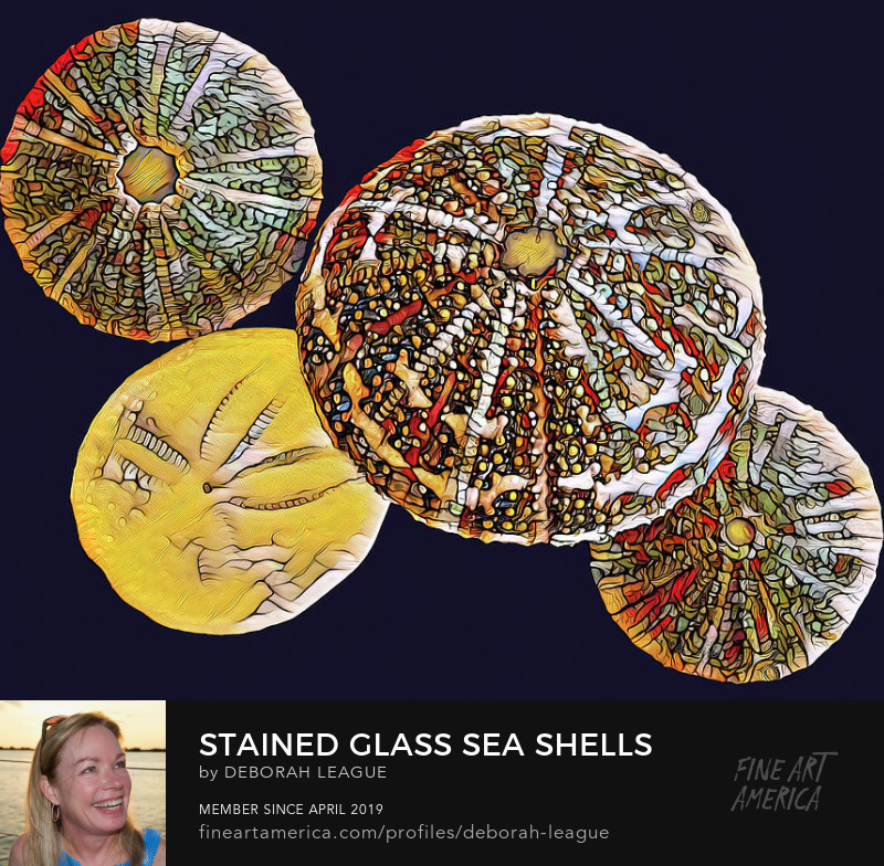 Mixed Media Cosmic Stained Glass Seashells by Deborah League