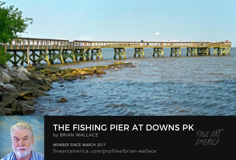 The Fishing Pier At Downs Pk by Brian Wallace