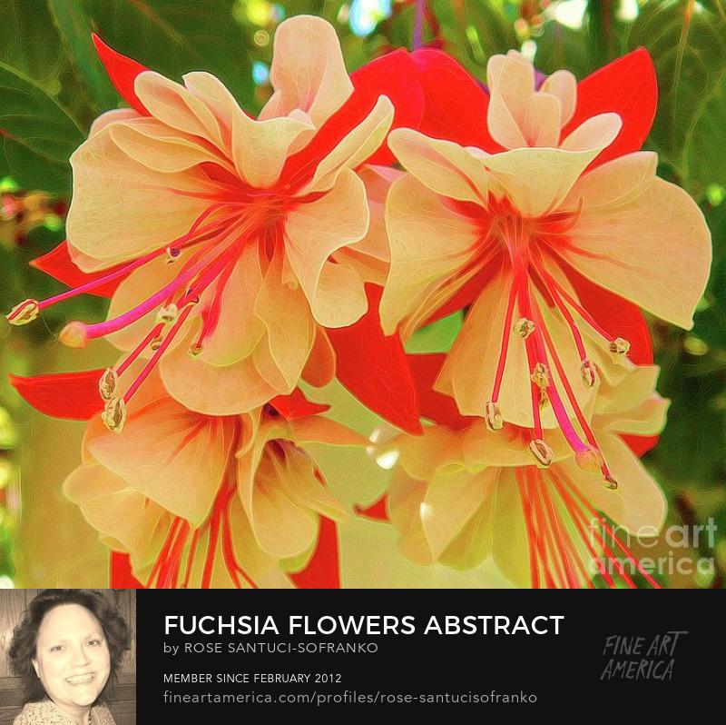 Fuchsia Flowers Abstract Melting Effect  Canvas Art