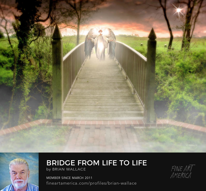 Bridge From Life To Life by Brian Wallace
