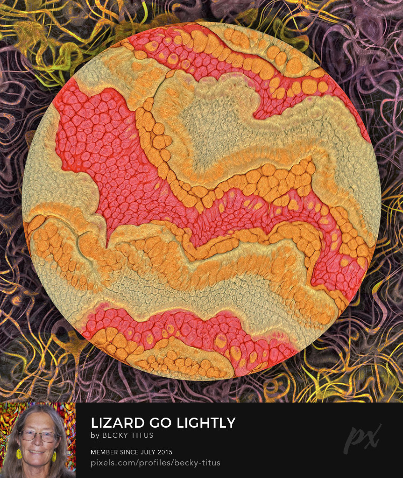 Lizard Go Lightly by Becky Titus