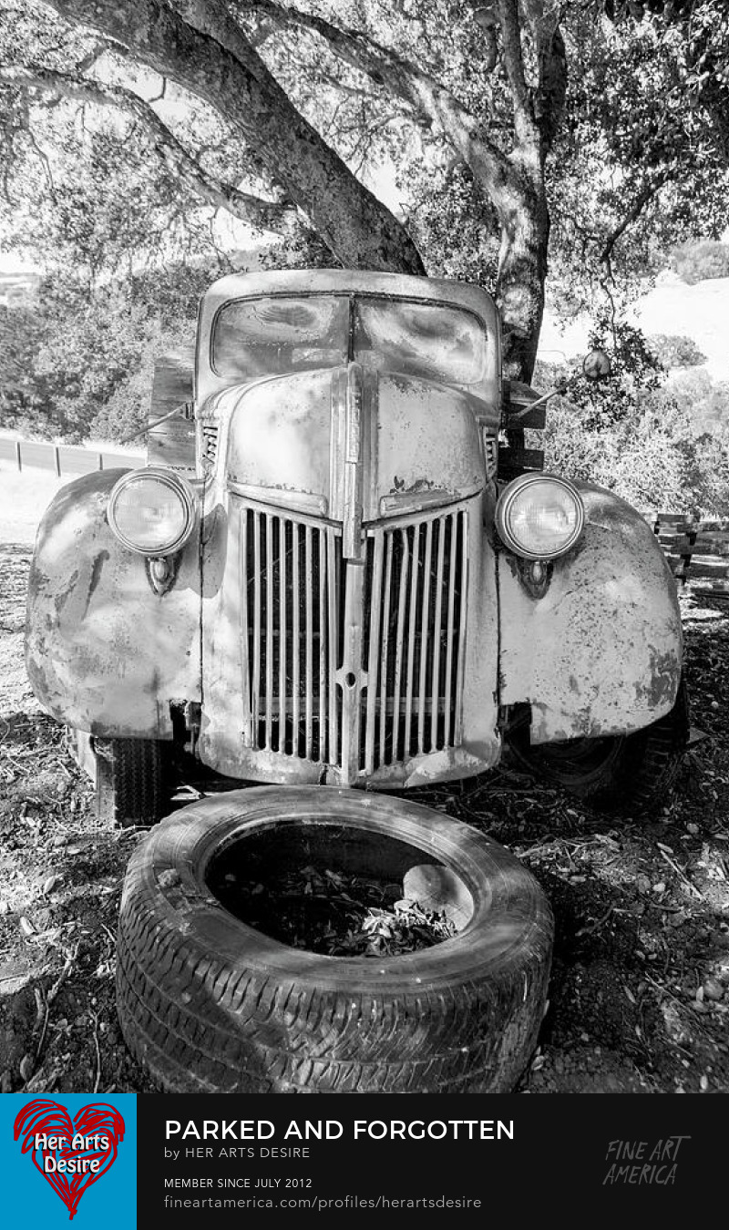 An Old Ford Pickup Work Truck Put Out To Pasture