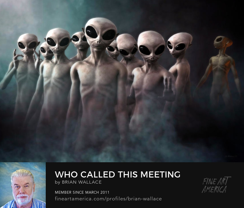 Who Called This Meeting by Brian Wallace