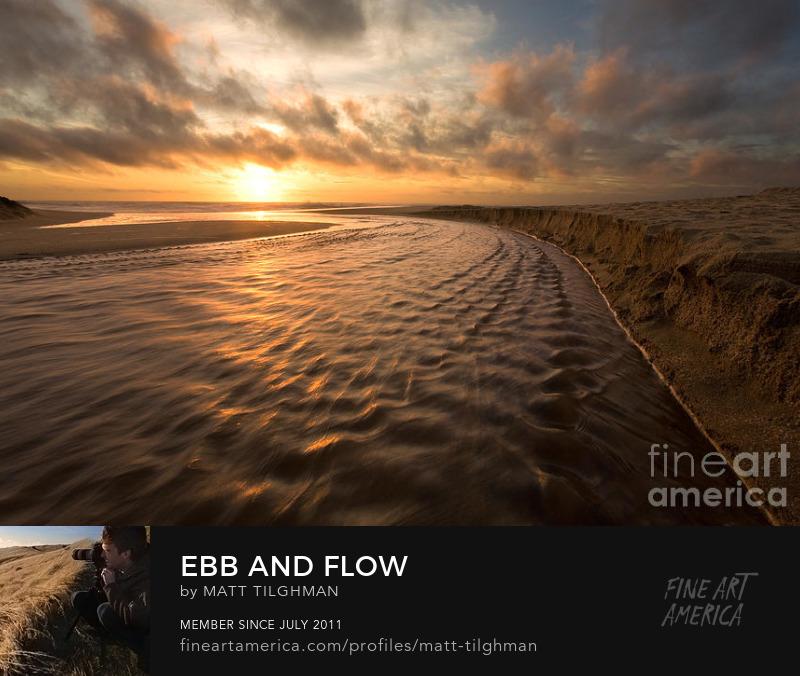 Ebb and Flow Montara State Beach Art Online