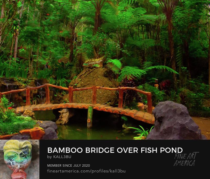 Bamboo bridge fish pond tropical rainforest Wall Art by kalle3bu