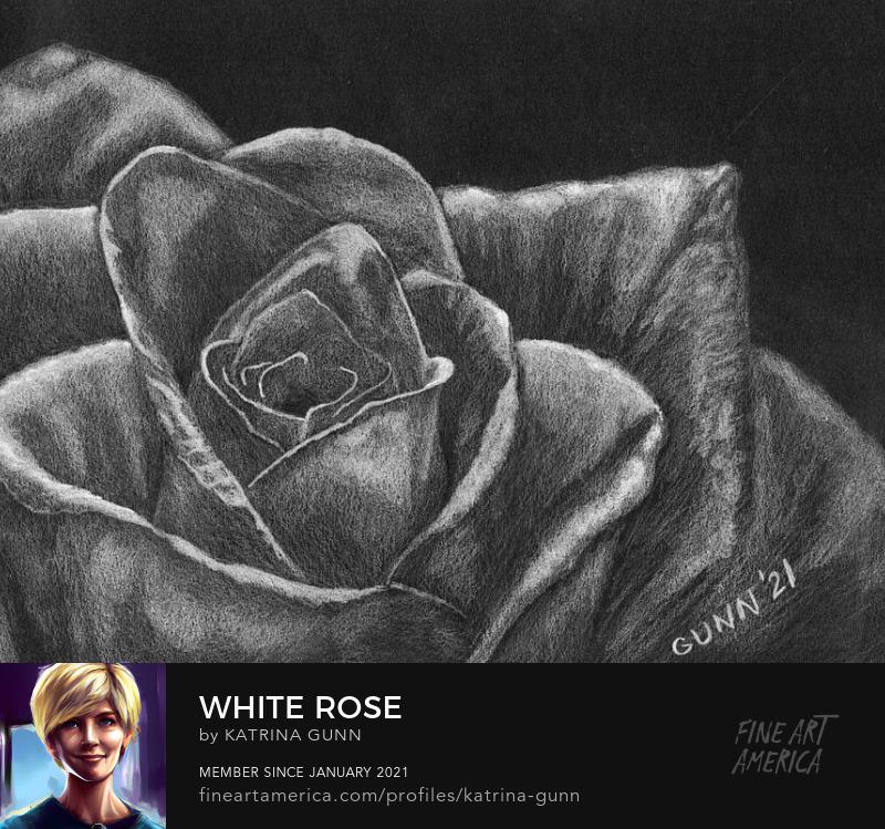 white flower black background
