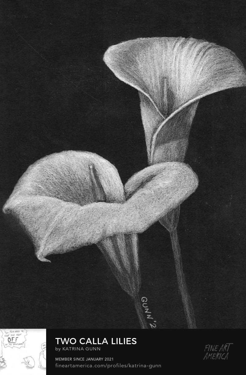 floral drawing white on black