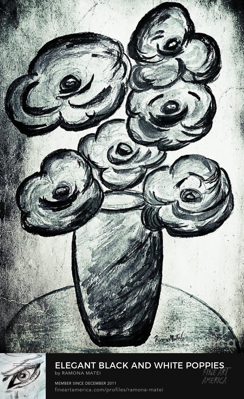 carbon look black and white pencil drawing poppies