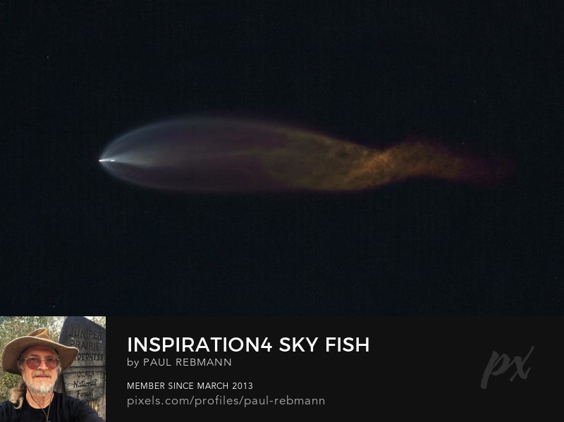 View online purchase options for Inspiration4 Sky Fish by Paul Rebmann