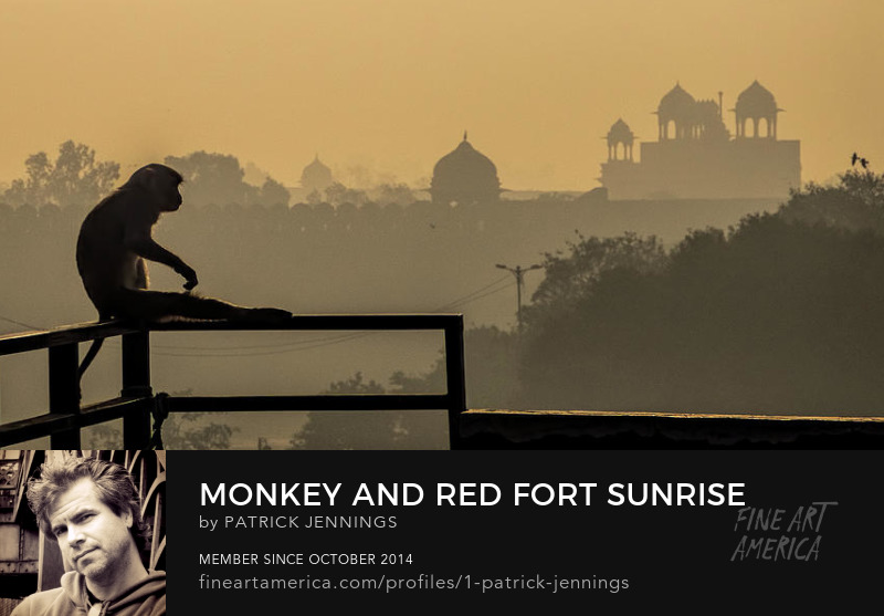 Monkey and Red Fort Sunrise, Fine Art Photography Prints