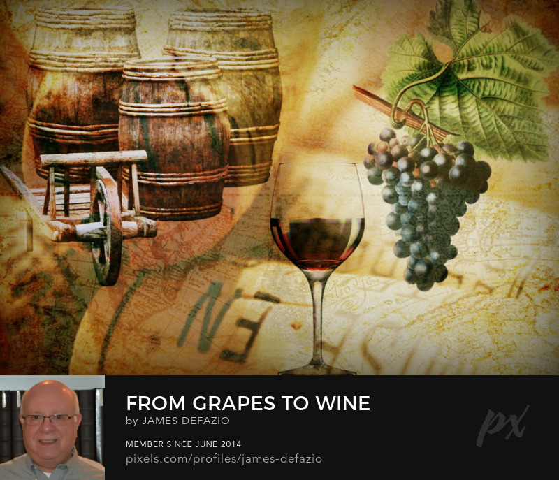 From Grapes To Wine