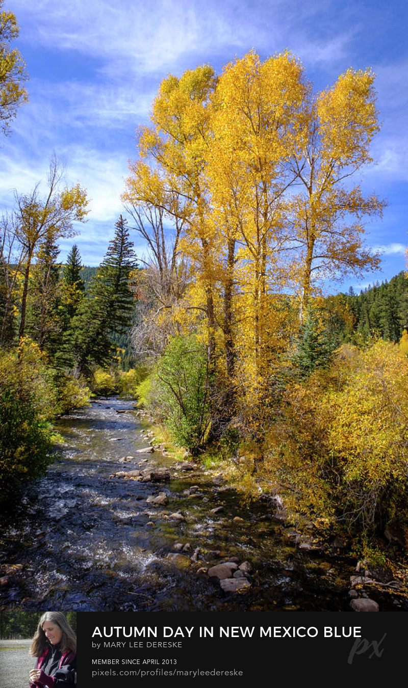 autumn-day-in-new-mexico-blue-skies-golden-trees-mary-lee-dereske