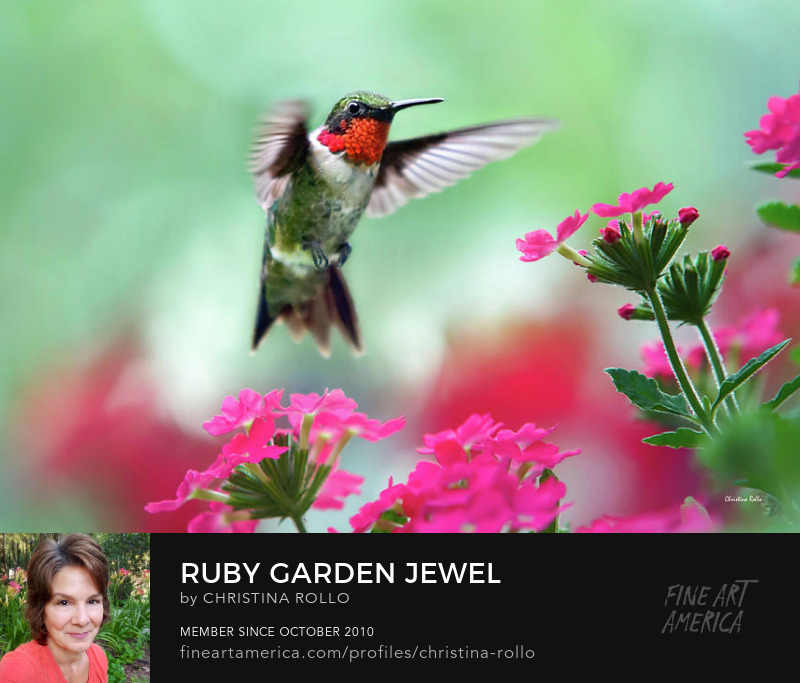 Ruby Garden Jewel