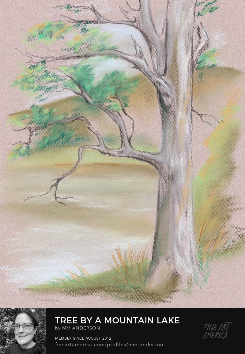 Tree by a Mountain Lake artwork for sale by MM Anderson