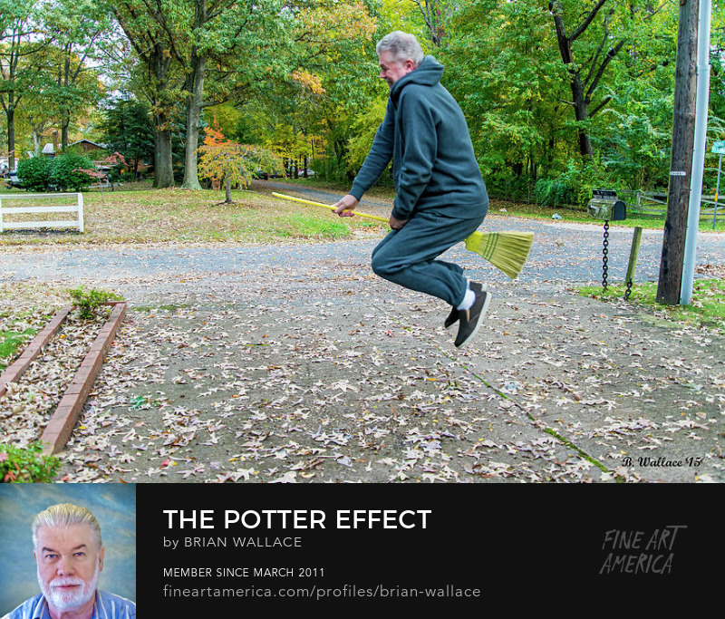 The Potter Effect by Brian Wallace