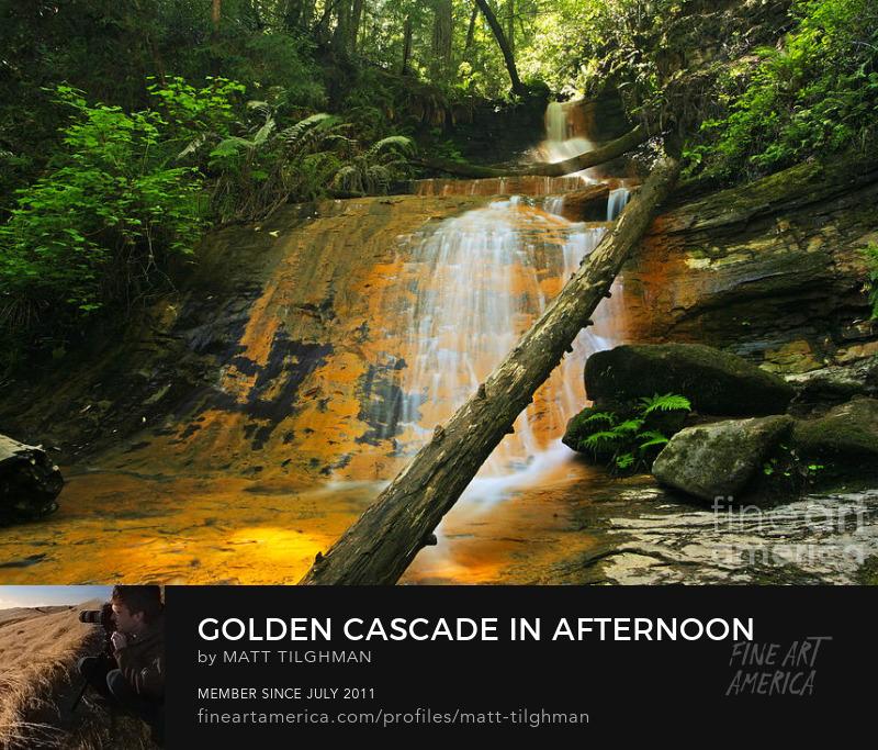 Golden Cascade Waterfall Art Prints