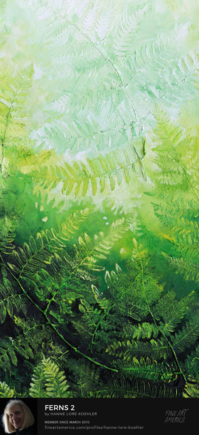 Ferns canvas Prints