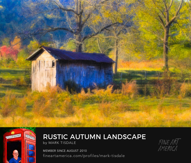 Autumn in North Georgia Art Print