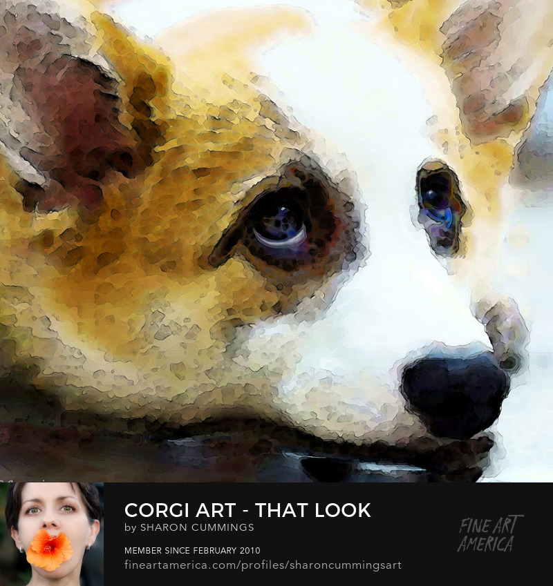 Corgi Dog Portrait Prints