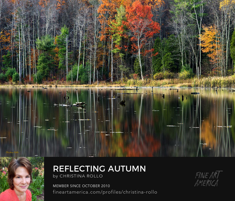 Reflecting Autumn