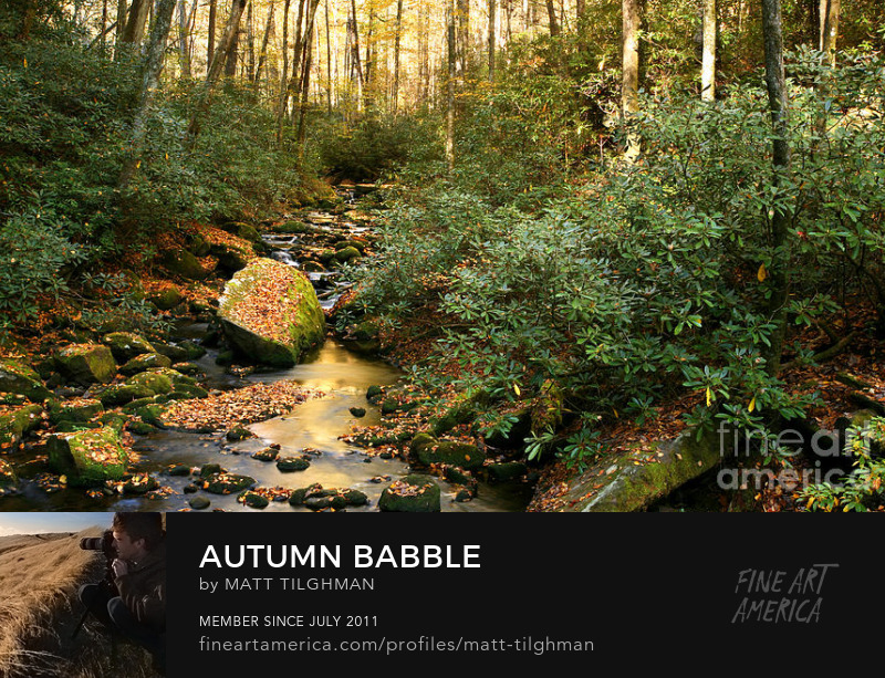 North Carolina Photography Prints