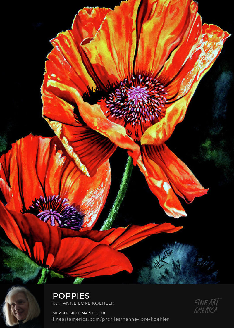Poppy Painting And Art Prints
