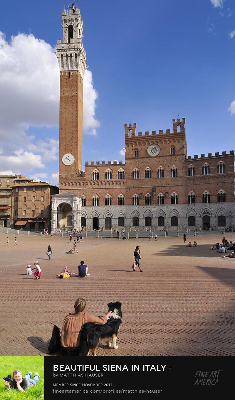 Siena Italy Piazza del Campo Art Prints