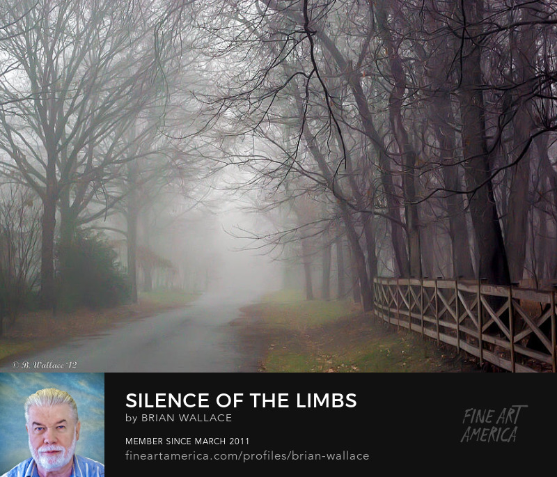 Silence Of The Limbs by Brian Wallace