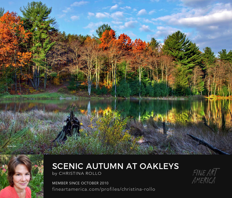 Scenic Autumn At Oakleys